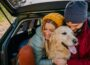 A couple holding the dog and sitting in car